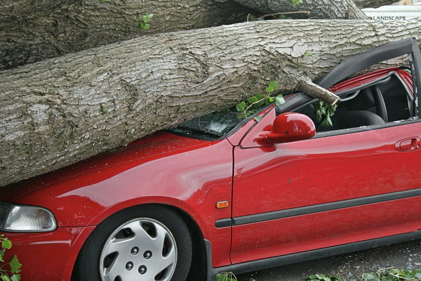 Auch ein Neuwagen bleibt nicht davor verschont, nach wenigen Wochen oder Monaten als Totalschaden zu enden. (Bild: Scott Leman / Shutterstock.com)