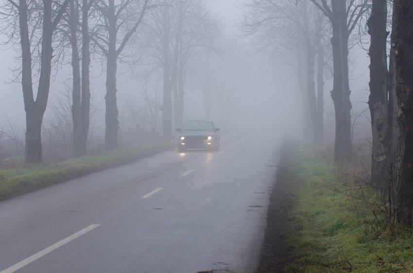 Im Herbst soll man unbedingt auf das richtige Licht achten. (Bild: Budimir Jevtic / Shutterstock.com)
