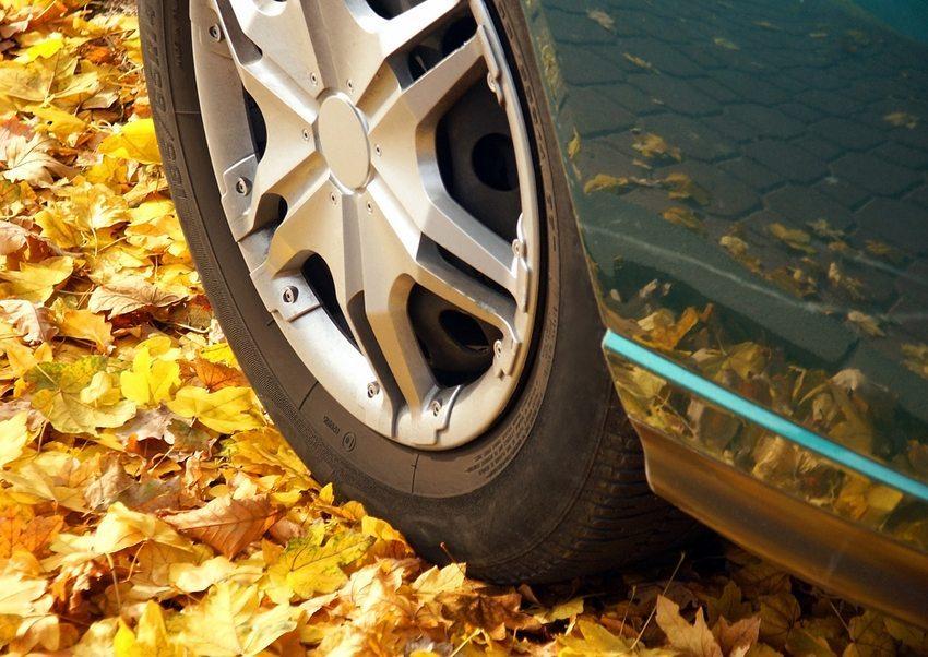 Herabgefallenes Laub, Nässe, Schmutz machen das Fahren im Herbst oft zu einer komplizierten Aufgabe. (Bild: Robert Red / Shutterstock.com)