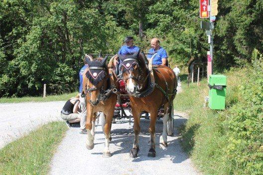 Die E-Kutsche im Testbetrieb in Braunwald (Bild: © Schuler Transporte Braunwald)