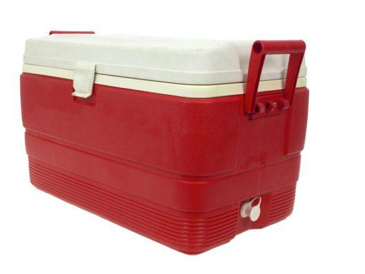 Kühlboxen gehören am besten mit an Bord. (Bild: ericlefrancais - shutterstock.com)
